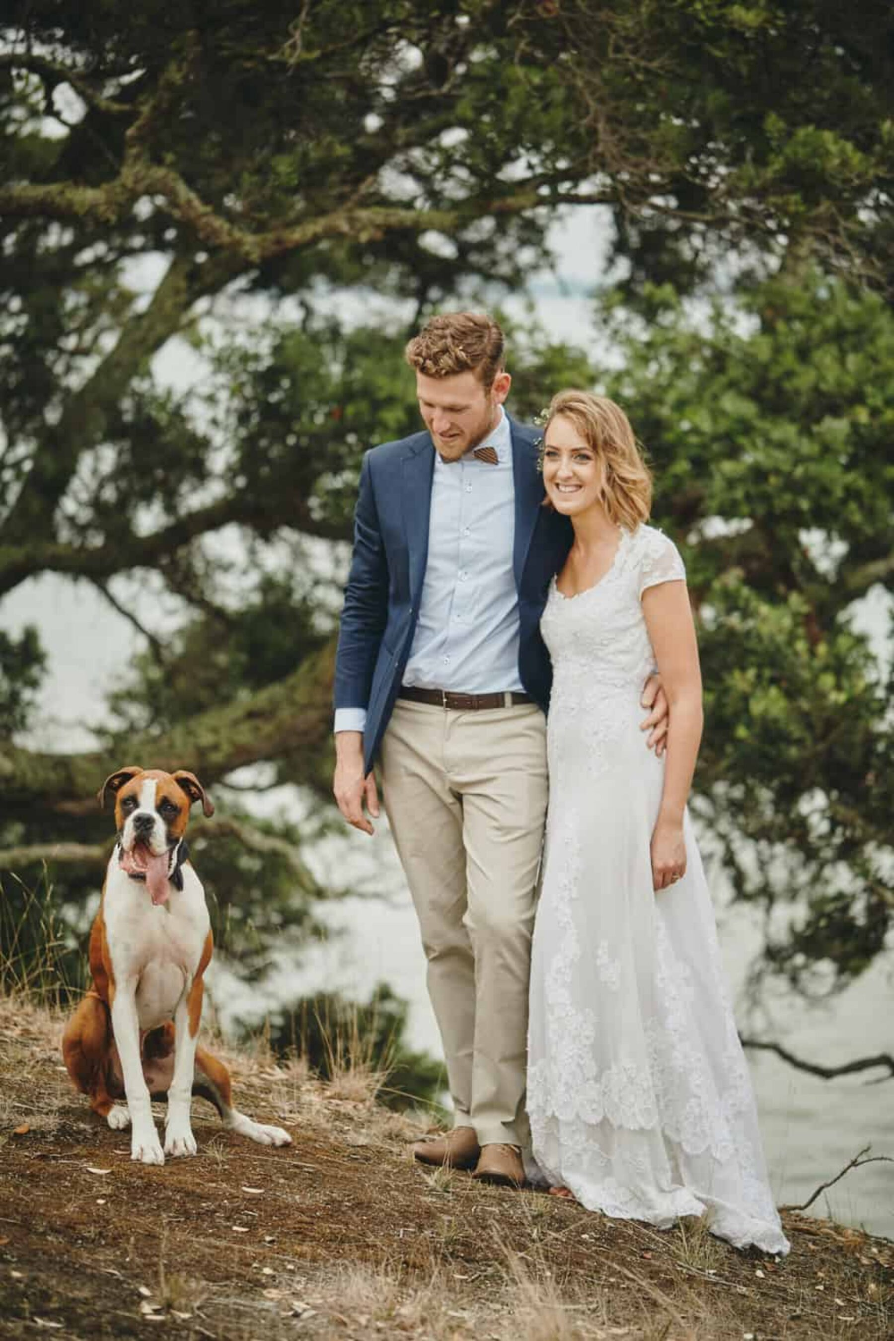 bride and groom with pet boxer dog