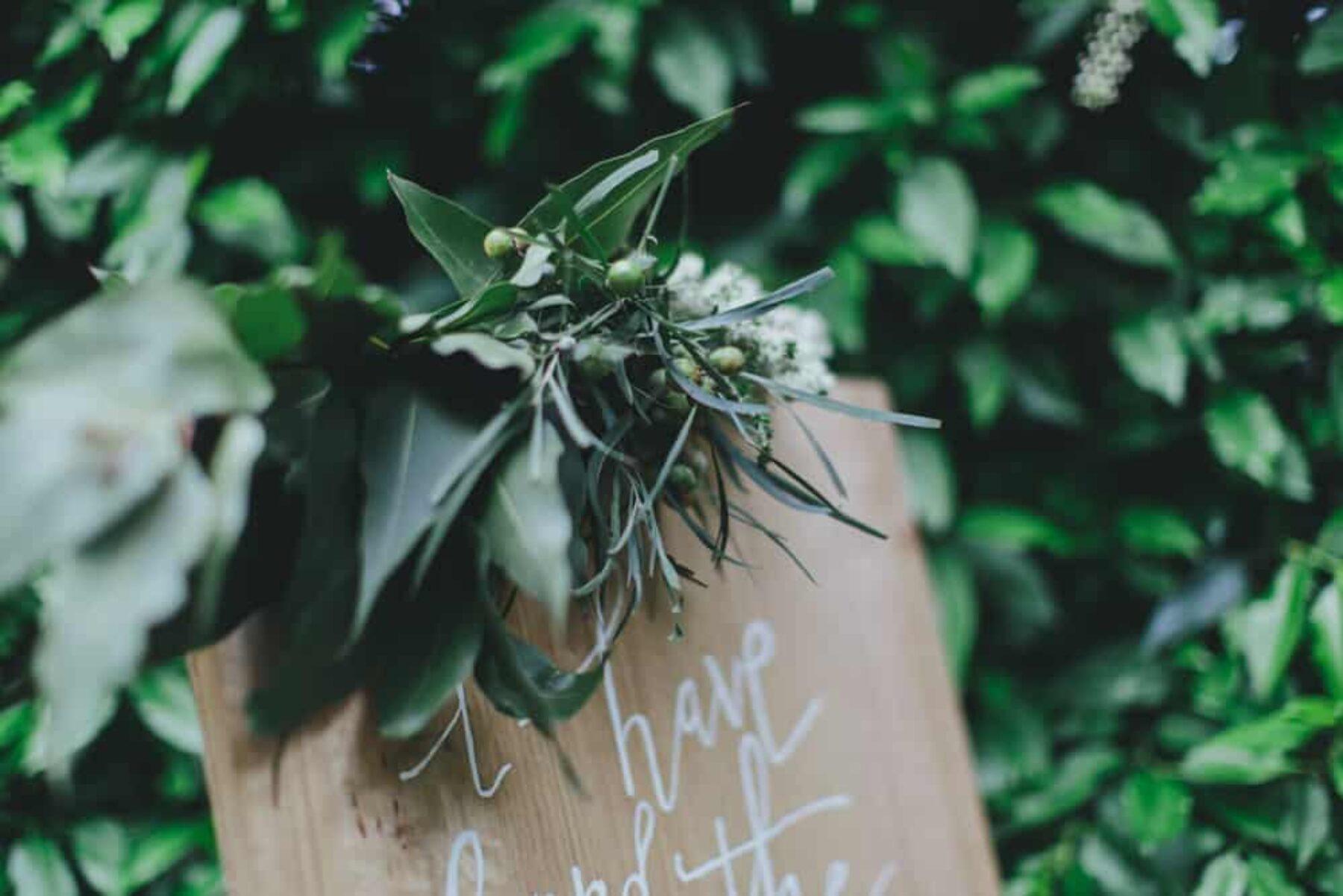 Alowyn Gardens Wedding / photography by Kim Cartmell