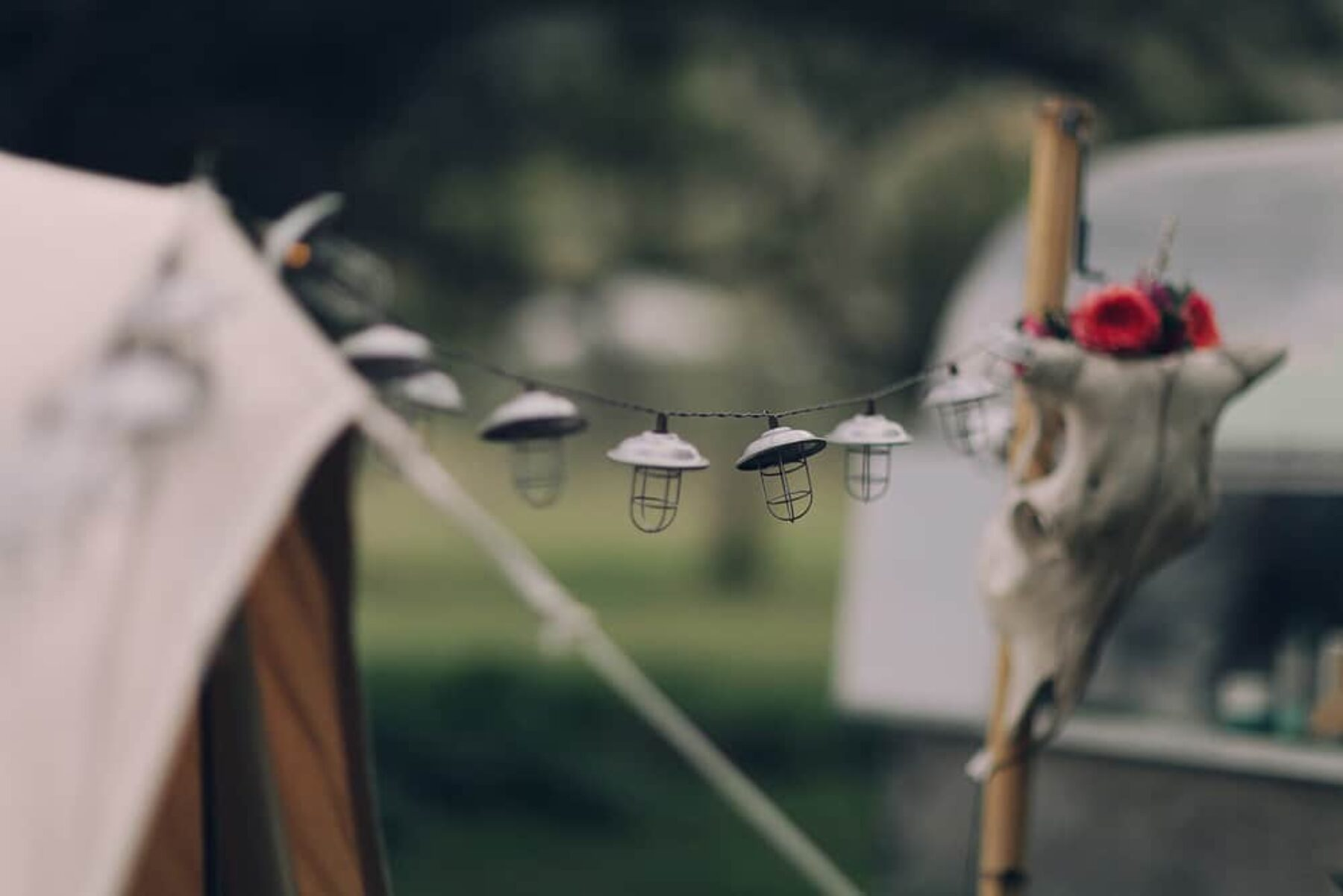Intimte glamping elopement in the Gold Coast Hinterland