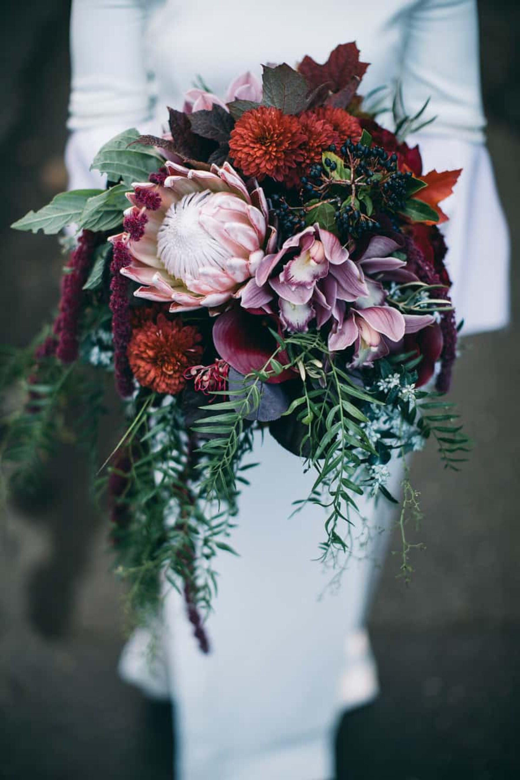 berry-toned bouquet with king protea and orchids