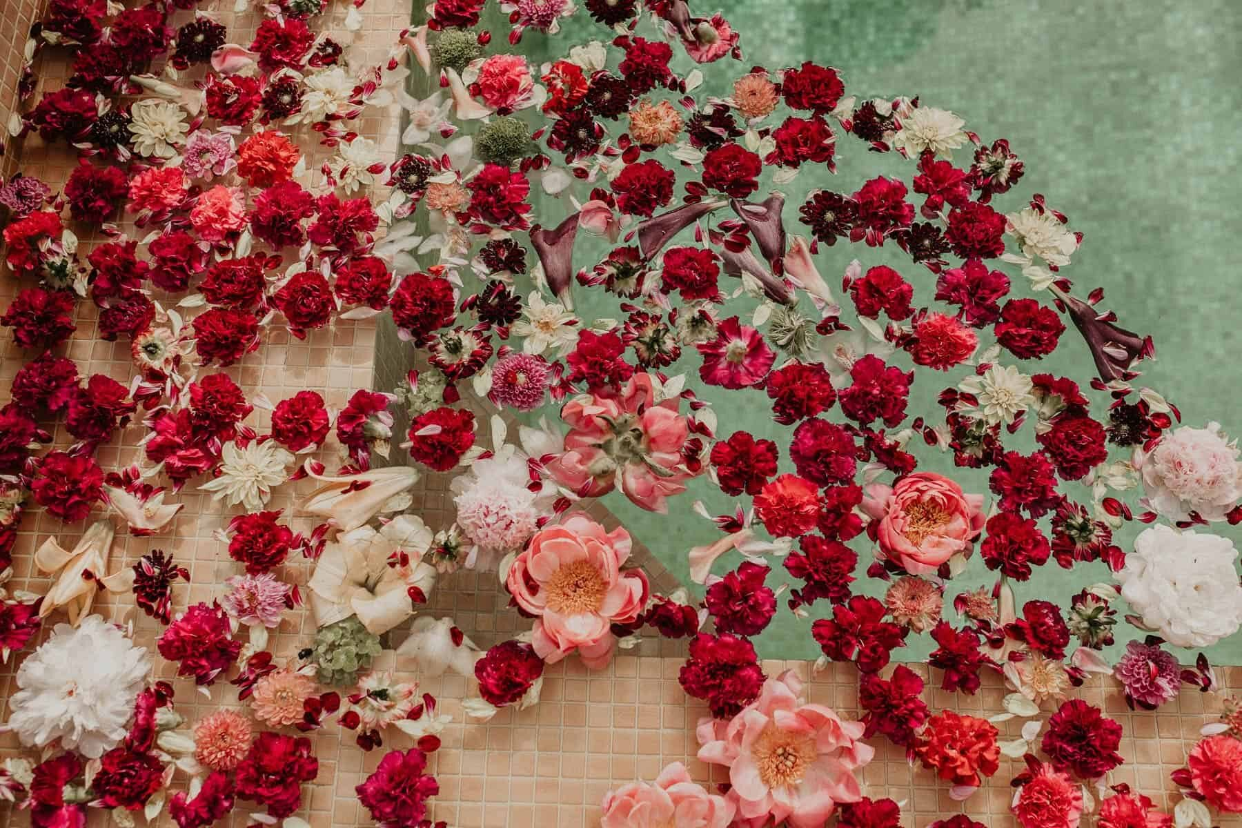 red and pink flowers in a swimming pool